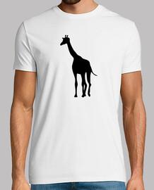 jirafa áfrica