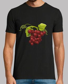 junge rote trauben