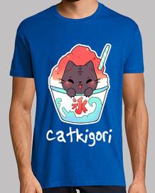 Kakigori Katze