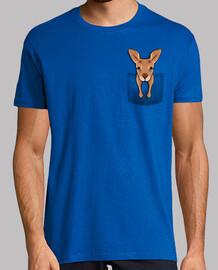 kangourou de poche
