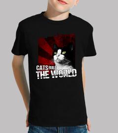 katzen beherrschen die welt