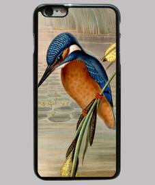 kingfisher a