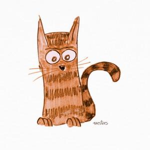 Camisetas Kitten