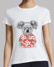 koala d'été