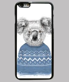 koala d'hiver