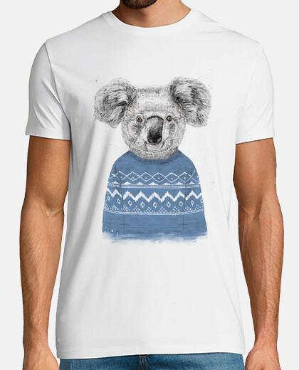 koala invernale