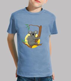 Koala, niño