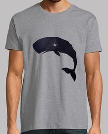 la balena e la notte (h)