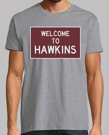 la bienvenida a hawkins