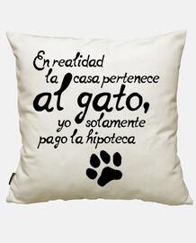 La casa es del gato
