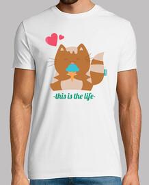 la vie de chaton