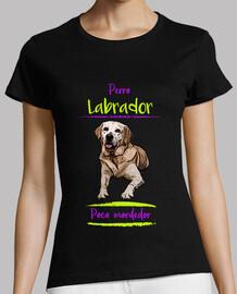 labrador dog, little biter