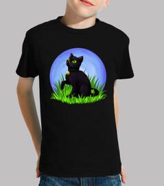 Ladybug and Black cat