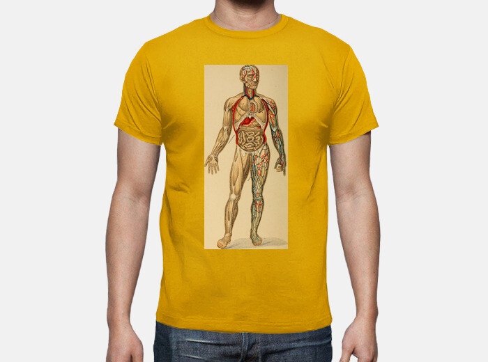 Camiseta Lámina antigua - Anatomía - nº 1804572 - Camisetas latostadora