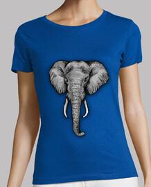 l'éléphant majestueux