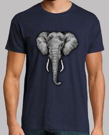 l'éléphant majestueux h