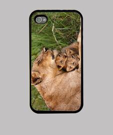 leonessa e cub