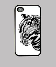 Leopard cat kitten