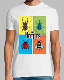 les coléoptères