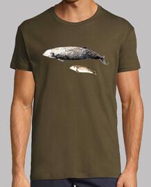 l'homme, manches courtes, armée, qualité extra baleine à bec de cuvier