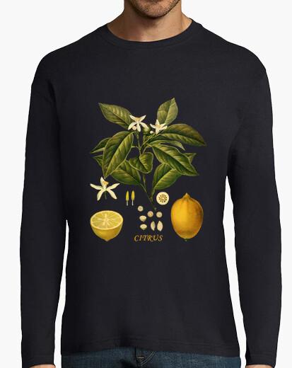 Camiseta LIMÓN - Ilustración botánica Siglo XIX