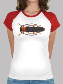 Longhorned beetle-Escarabajo de ojos