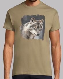 Loup ibérique 2