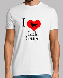 love setter irlandais
