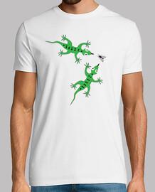 lucertole - mosca