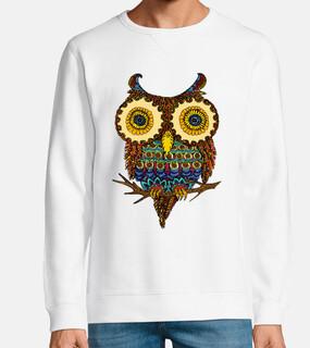 luna the owl