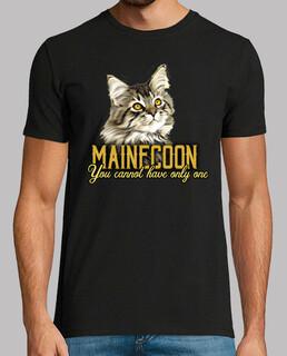 mainecoon