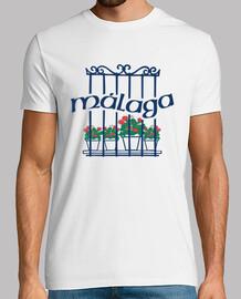 Malaga, reja con geranios