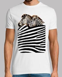 Mar de Cebras