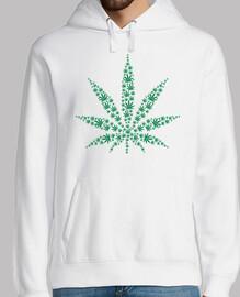 marihuana hojas de droga