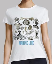 Marine Life / Animales Marinos / Ingles