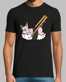 Mascota Gato Esfinge Sushi