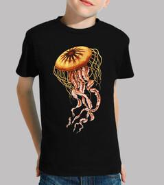 Medusa Ilustracion / Animal Marino