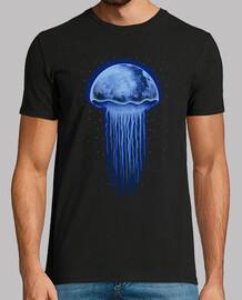 méduse de lune