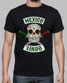 mexican skull with daggers mexico cute
