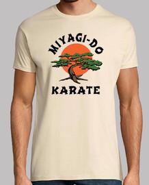 Miyagi-Do Karate (Karate Kid)