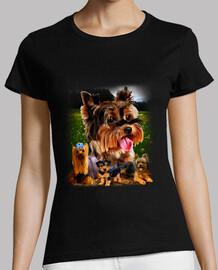 modèle de yorkshire terrier