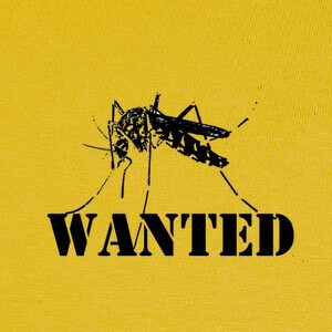 Camisetas Mosquito tigre
