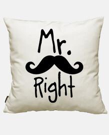 mr. droit