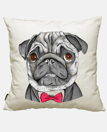 Mr. Pug