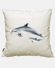 mular dolphin (tursiops truncatus)