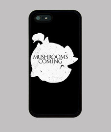 Mushrooms are coming