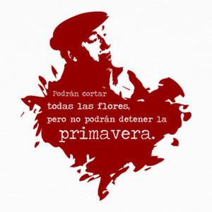 Camisetas Neruda (granate)