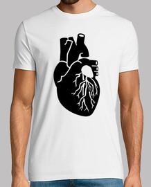 órgano del corazón