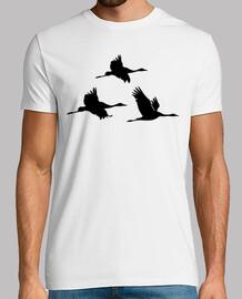 oiseaux grue