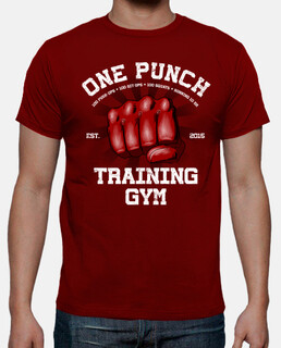 one punch gym